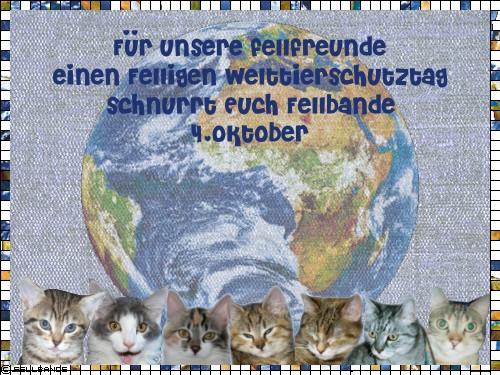Fellbandes Welttierschutztag!